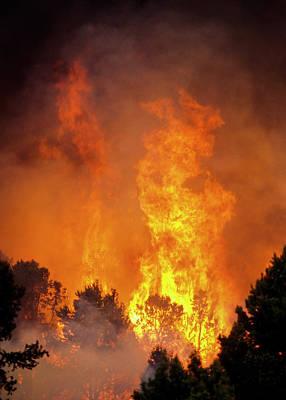 Photograph - Toiyabe Flames by Robert Potts