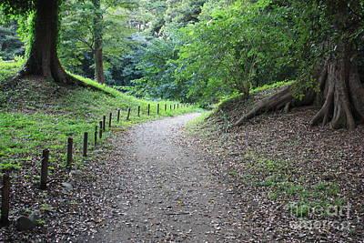 Photograph - Tokyo Park Path by Carol Groenen