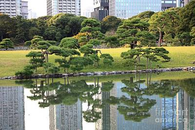 Photograph - Tokyo Trees Reflection by Carol Groenen