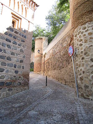 Photograph - Toledo Stone Pathway by John Shiron