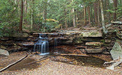 Swallow Photograph - Tolliver Falls In Swallow Falls State Park Maryland by Brendan Reals