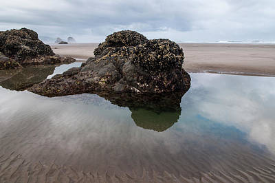 Tolovana Beach At Low Tide Art Print