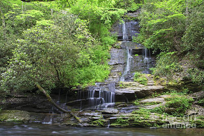 Photograph - Tom Branch Falls In The Spring by Jill Lang