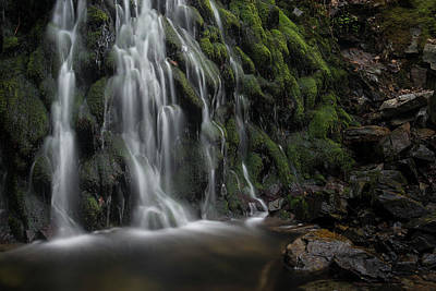 Photograph - Tom Gill Waterfall, Cumbria, England by David Stanley