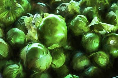Photograph - Tomatillo 2 by Travis Burgess