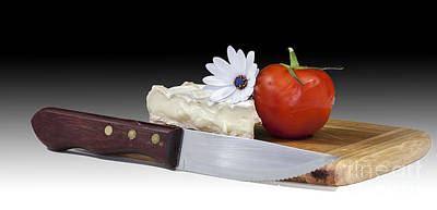 Photograph - Tomato And Cheese by Shirley Mangini