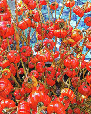 Digital Art - Tomato  by Don Wright