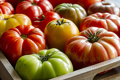 Photograph - Tomato Harvest by Teri Virbickis