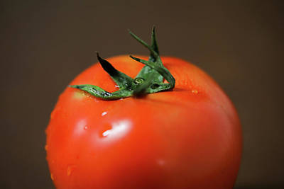 Photograph - Tomato by Hyuntae Kim
