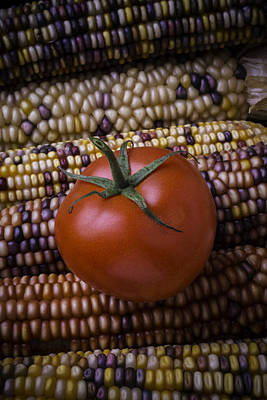 Indian Corn Wall Art - Photograph - Tomato On Indian Corn by Garry Gay