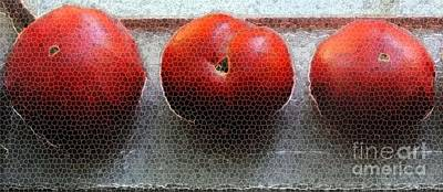 Painting - Tomato Trio by Hazel Holland