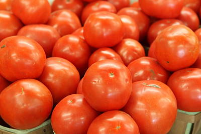 Photograph - Tomatoes 247 by Michael Fryd