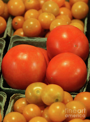 Photograph - Tomatoes #4 by PJ Boylan