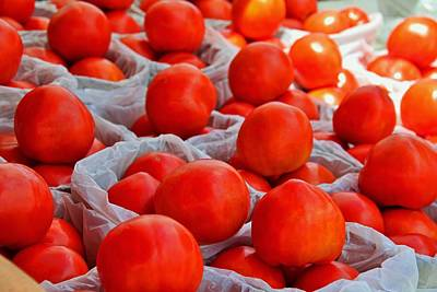 Photograph - Tomatoes II by Michiale Schneider