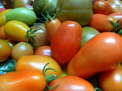 Photograph - Tomatoes by Jean Evans