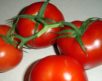 Photograph - Tomatoes by Lynda Lehmann