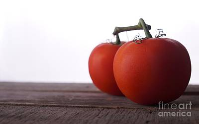 Photograph - Tomatoes On A Vine by Vincent Billotto