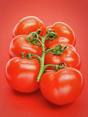 Photograph - Tomatoes by Wim Lanclus