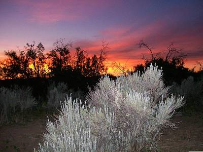 Photograph - Tombstone Sunset by Kathleen Heese