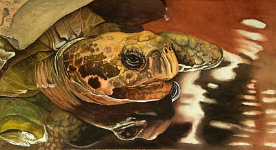 Wall Art - Painting - Tommy Turtle by Terry Arroyo Mulrooney