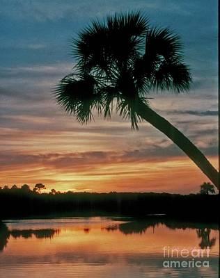 Photograph - Tomoka Blue Sunset by Dodie Ulery