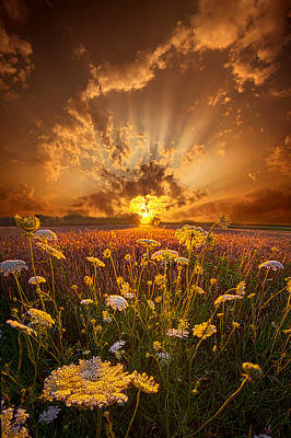 Photograph - Tomorrow Is Just One Of Yesterday's Dreams by Phil Koch