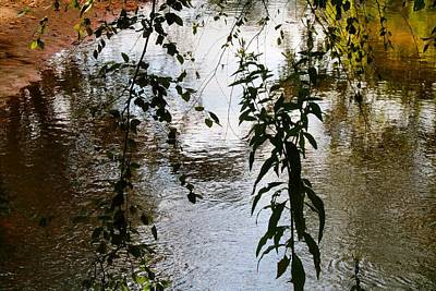 Photograph - Toms Creek 2 by Kathryn Meyer