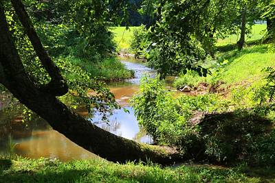 Photograph - Toms Creek In Summer 1 by Kathryn Meyer