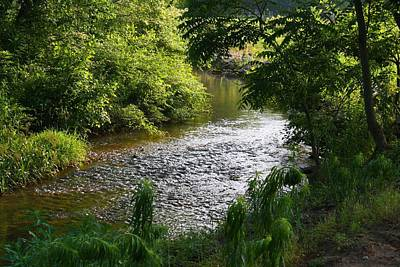 Photograph - Toms Creek In Summer 2 by Kathryn Meyer