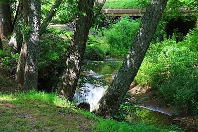 Photograph - Toms Creek In Summer 3 by Kathryn Meyer
