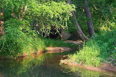 Photograph - Toms Creek In Summer by Kathryn Meyer