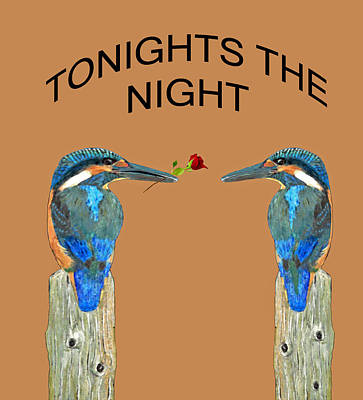 Kingfisher Mixed Media - Tonights The Night Kingfishers by Eric Kempson