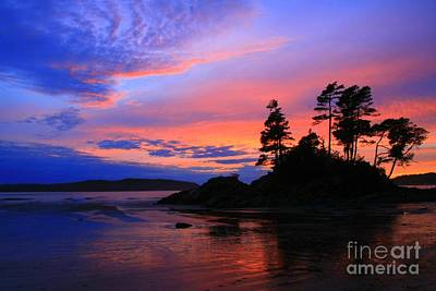 Photograph - Tonquin Sunset by Frank Townsley