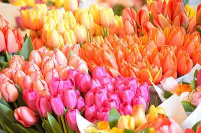 Tons Of Tulips Art Print