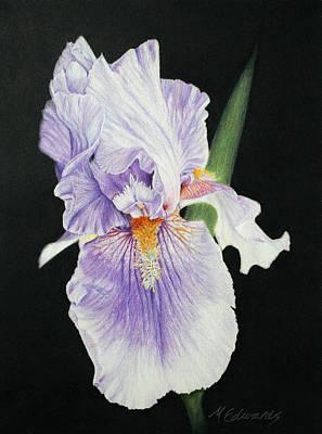 Tonto Basin Iris Art Print