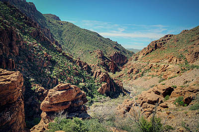 Photograph - Tonto National Forest by Ray Devlin