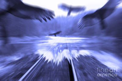 Digital Art - Too Fast  by Cathy Beharriell