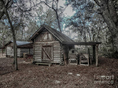 Photograph - Tool Shed by Judy Hall-Folde