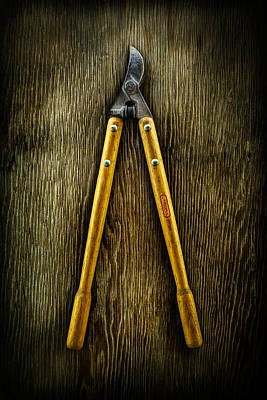 Scissors Photograph - Tools On Wood 34 by YoPedro