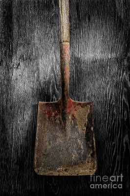Photograph - Tools On Wood 4 On Bw by YoPedro