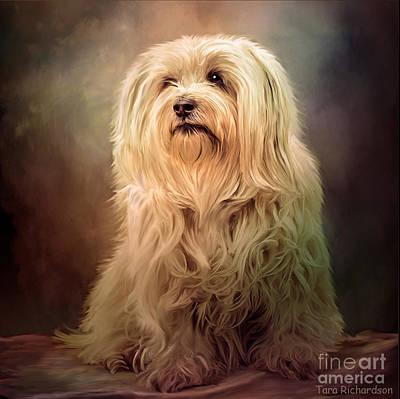Painting - Top Dog by Tara Richardson
