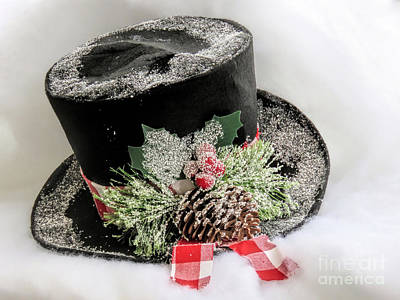 Photograph - Top Hat  by Janice Drew