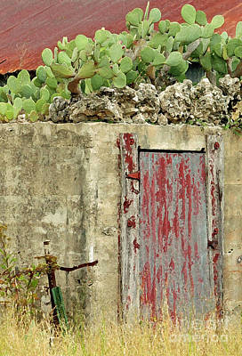 Old Door Photograph - Top Heavy by Joe Jake Pratt