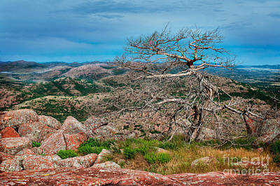 Top Of Mt. Scott Looking West Art Print by Tamyra Ayles