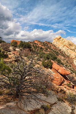 Photograph - Top Of The Monocline by Kathleen Bishop
