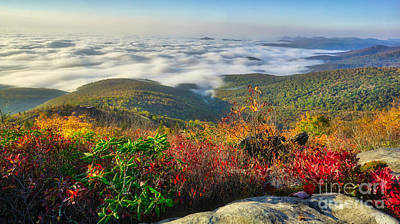 Photograph - Top Of The Morning At Rough Ridge On The Blue Ridge Parkway by Daniel Brinneman