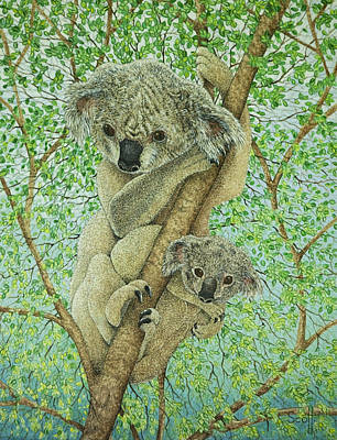 Koala Wall Art - Painting - Top Of The Tree by Pat Scott