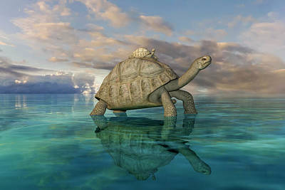 Turtle Digital Art - Top Of The World by Betsy Knapp