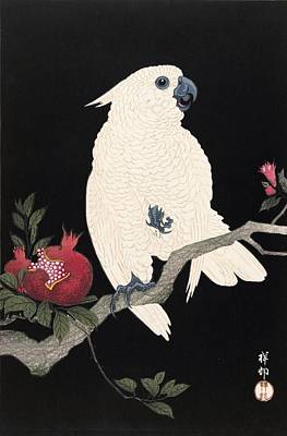 Cockatoo Wall Art - Painting - Top Quality Art - Parrot And Pomegranate by Ohara Koson