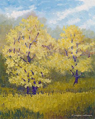 Painting - Topanga State Park Trees by Douglas Castleman